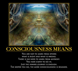 CONSCIOUSNESS MEANS 