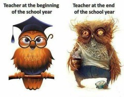 Teacher at the beginning 