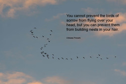 You cannot prevent the birds of 