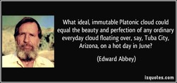 What ideal, immutable Platonic cloud could 