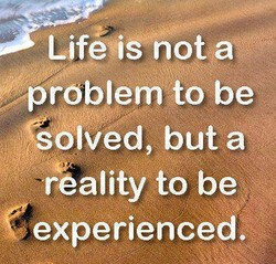 LifeqiS nota * 