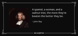 A spaniel, a woman, and a