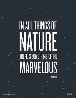 IN THINGS OF 