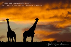 THERE ARE NO FOREIGN LANDS. 
