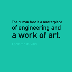 The human foot is a masterpiece 