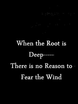 When the Root is 