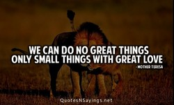 WE CAN DO NO GREAT THINGS 