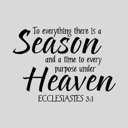 To evoythlng there is a 