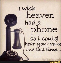 t wish 