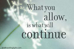What you 