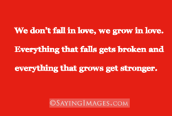 We don't fan in love, we grow in love. 