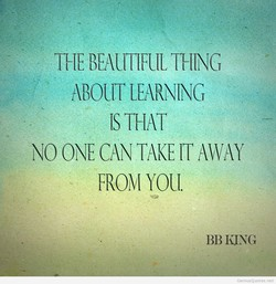 THE BEAUTIFUL THING 