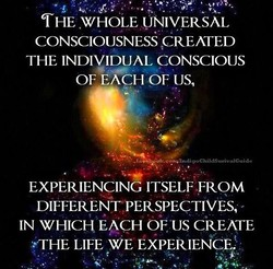 THE WHOLE UNIVERSAL 