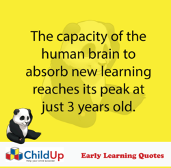 The capacity of the