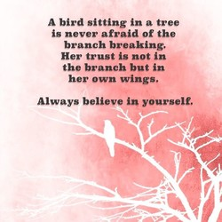 A bird sitting in a tree 