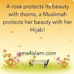 A rose protects its beauty