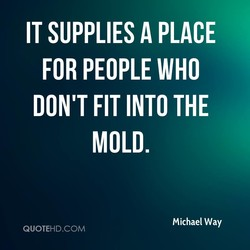 IT SUPPLIES A PLACE 