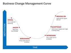 Business Change Management Curve