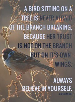 SITTING ON 