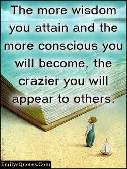 The more wisdom 