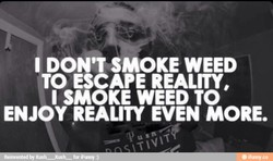 I DON'T SMOKE WEED 