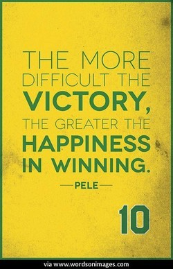 THE MORE 