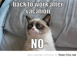 bacl( to work after 