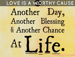 LOVE IS A WORTHY CAUSE 