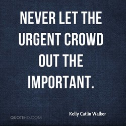 NEVER LET THE 