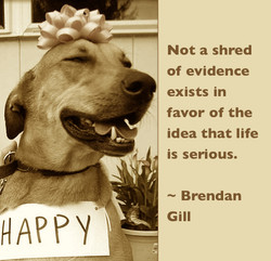 Not a shred 