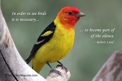 htt 