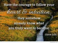 Have the courage to follow your 