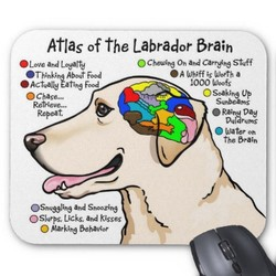 Atlas of the Labrador
