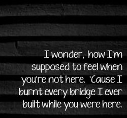 I wonder, how I'm 