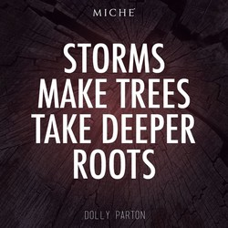 MICHE 
