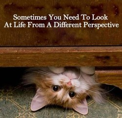Sometimes You Need To Look 