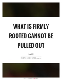 WHAT IS FIRMLY 