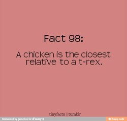 Fact 98: 