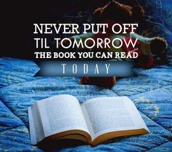 NEVER OF 