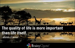 The quality of life is more important 