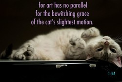 for art hos no parallel 