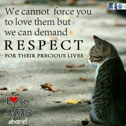 We cannot force you 