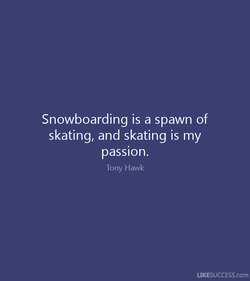 Snowboarding is a spawn of 