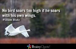 No bird soars too high if he soars 