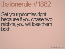 Set your priorities right, 