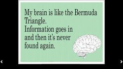 My brain is like the Bermuda 