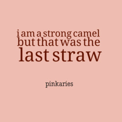 i am a strong camel 