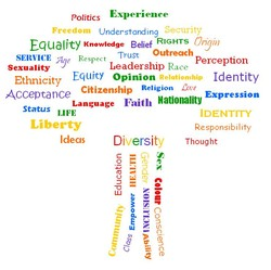 Politics xperience 