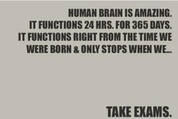 HUMAN BRAIN IS AMAZING. 