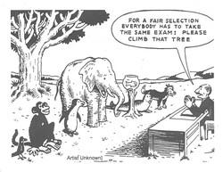 FOR A FAIR SELECTION 